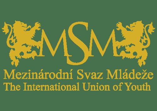 logo msm